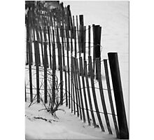 Sea Grass And Fencing Photographic Print