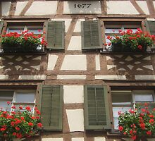 Bavarian Flower Windows by Simon Zybek