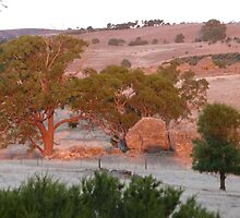 Bushfire Glow, over the paddock just after 6.55pm. 'Arilka'.  by Rita Blom