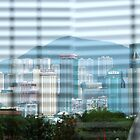 View of Hong Kong from the Peninsula Hotel by Rod Hawk
