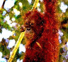 Orangutan fibre by Suramics