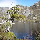 Crater Lake, Tasmania, Australia by gaylene