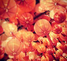 Mid-Autumn Festival by apeeski