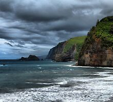 Pololu Valley Headlands by Matt Gibbs
