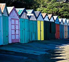 Fancy a shed? by Lisa Wilson