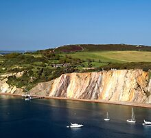 Alum Bay and the Coloured Sand Cliffs by Rod Johnson