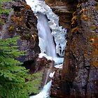 Johnston Canyon falls, Rocky Mountains by LenitaB