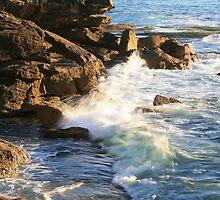 Bondi to Bronte Coast Walk by Christopher Chan