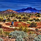 Along the Sonoran Trail by Roger Passman