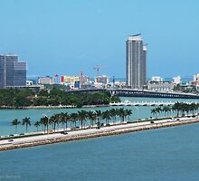 Miami Shoreline by Sandra Bernard