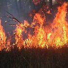 Burning Off by Ian McKenzie
