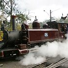 Puffing Billy  by Tony Waite
