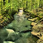 Energizer Creek by trwphotography