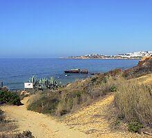 Coastal Path by mariarty