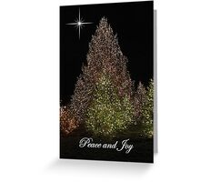 Peace and Joy ~ Lights of Christmas  Greeting Card