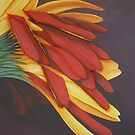 Gerbera II (from photo by Tracy Wallace) by cathy savels