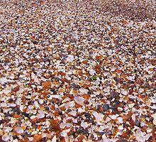 Glass Sand Beach by Diana Forgione