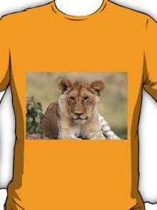 Masai Mara Lion Portrait  T-Shirt