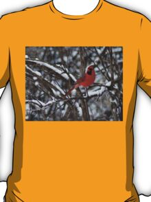 Beauty in the Snow. T-Shirt