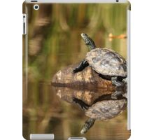 Sun Worshiper - Map Turtle iPad Case/Skin