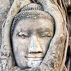 Ayutthaya buddha by Juha Sompinmäki