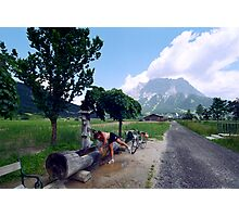 Road to Zugspitze Photographic Print