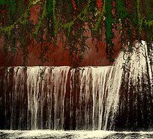 the red storm by Brandi Alshahin