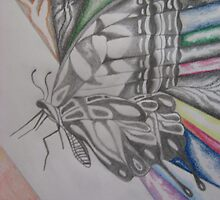 The Butterfly Effect by Theodora