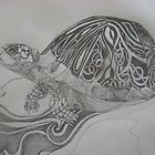 The Turtle by Theodora