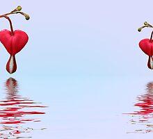 My Heart Bleeds by Kimberly Palmer