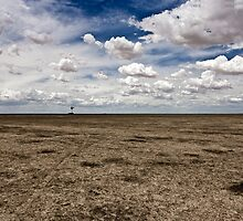 Barren lands by MagnusAgren