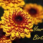 Greeting Card: Happy Birthday, Flowers by wallarooimages