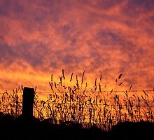The Gone With The Wind Sunset by KLMcreative