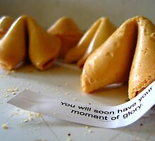 fortune cookie by bethanne4180