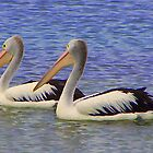 2 Pelicans by Jeff D Photography