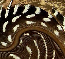 Twirled Feathers by HippyDi