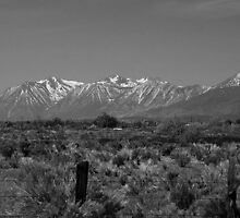 Sierra Mountains (B&W) by Cheri Perry