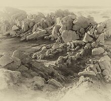 Rock Formation - Asilomar State Beach - Black and White by Nadim Baki