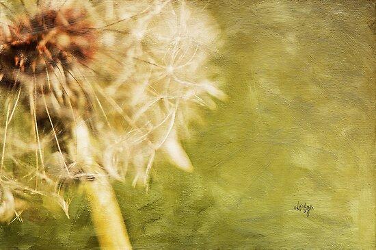 Wishful Thinking by Lois  Bryan