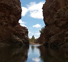 Ellery Creek Big Hole,  Northern Territory. by Lisa Evans