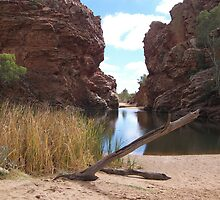 Ellery Creek Big Hole, Northern Territory  by Lisa Evans