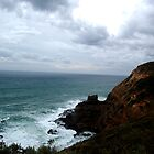 Cape Shank Lighthouse Victoria by Ngakeone