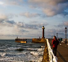 Whitby I by Andrew Briggs