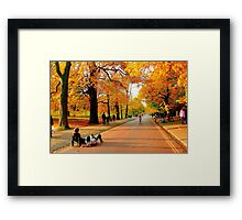 Colours of Automn !! Framed Print