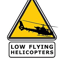 Low Flying Helicopters (1) by artguy24