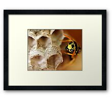 Home Maker Framed Print