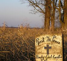 R.I.P. Baby Girl Carter by Felicia Moore