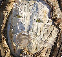 Tree Spirit by RLHall