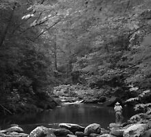 trout fishing in the smokies by Christopher  Ewing