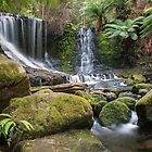 Horseshoe Falls - Tasmania by Paul Campbell  Photography